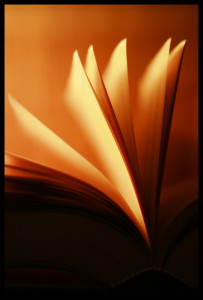 lighting_my_book_by_gabrielaalbu